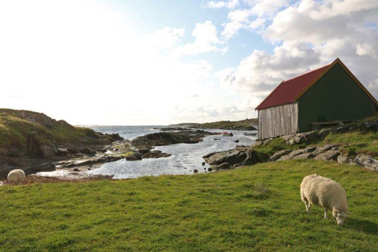 Endlich Norwegen. Das Land voller Fjorde, roter Holzhäuser und Elche. Ich war gespannt, ob mir dieser Teil Skandinaviens ebenso gut gefallen würde wie Schweden, das ich im vergangenen Jahr viel zu kurz gesehen, aber sofort in mein Herz geschlossen hatte. Zeitlich musste ich mich jetzt nach den rar gesäten Terminen der baldigen Fähre nach Island richten, wodurch mir nun zwei Wochen für die Entdeckung Norwegens zur Verfügung standen. Und vor diesem Hintergrund stand auch automatisch die Route…