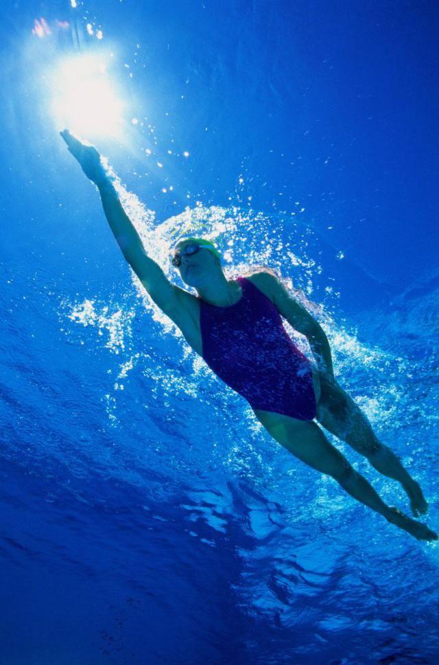 Girl Swimming Underwater Near Dolphins Stock Photo