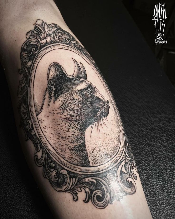 #tattoo #tattoos #ink #cat #cattattoo #cattattoos #frame #frametattoo #baroque #blackwork #blackworktattoo #linework #filigree @darkartists @blackworkers @blackworkers_tattoo #lyon #lyontattoo #quentinaldhui #qntnttts #hellodarkness
