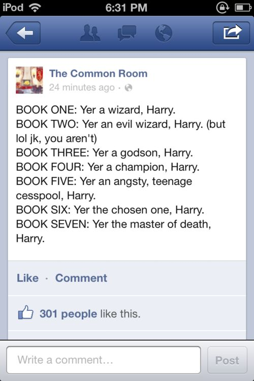 Never thought Harry Potter could be summed up in less than seventy sentences.