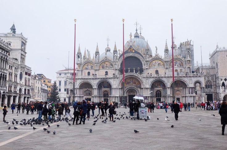 Piazza San Marco, Venezia     Valentina | Diarioinviaggio.it (@mayayoi) • Foto e video di Instagram