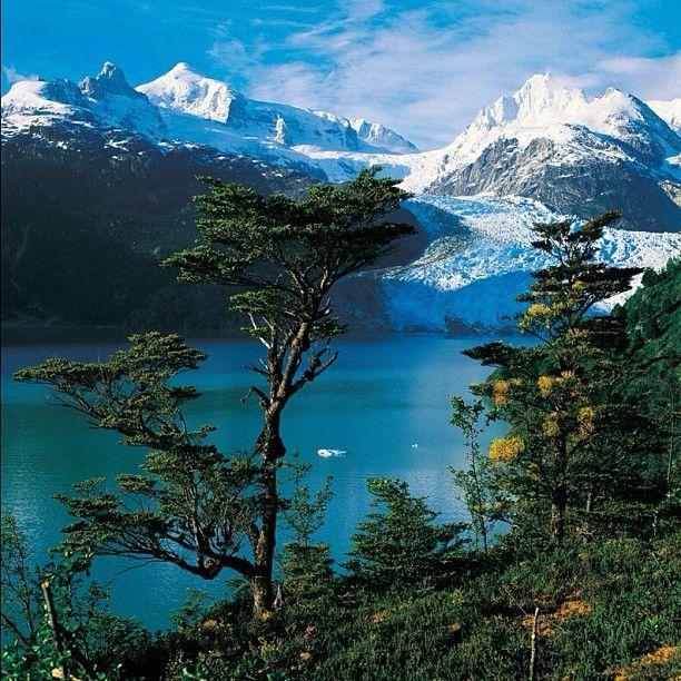Lago y Glaciar Leones, Campos de Hielo Norte. - photo by chilediscovery