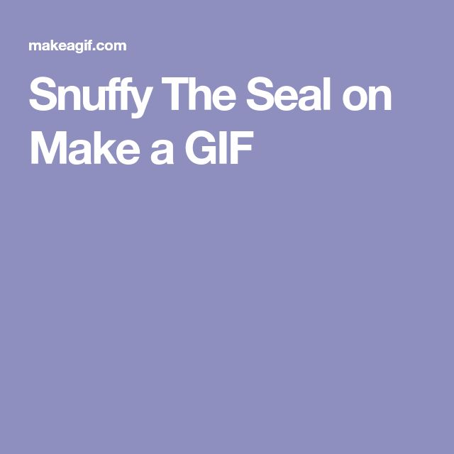 Snuffy The Seal on Make a GIF