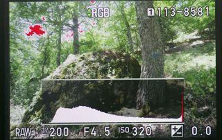 """Se attiviamo la funzione """"Visualizza aree chiare"""", quando rivediamo la fotografia le zone bruciate vengono segnalate con una colorazione rossa lampeggiante. Si tratta di un'informazione davvero molto utile."""