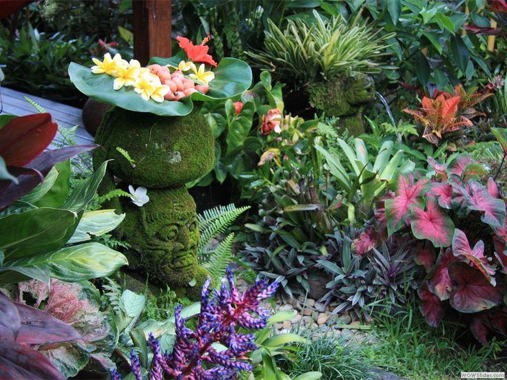 Plant heights subtropical garden