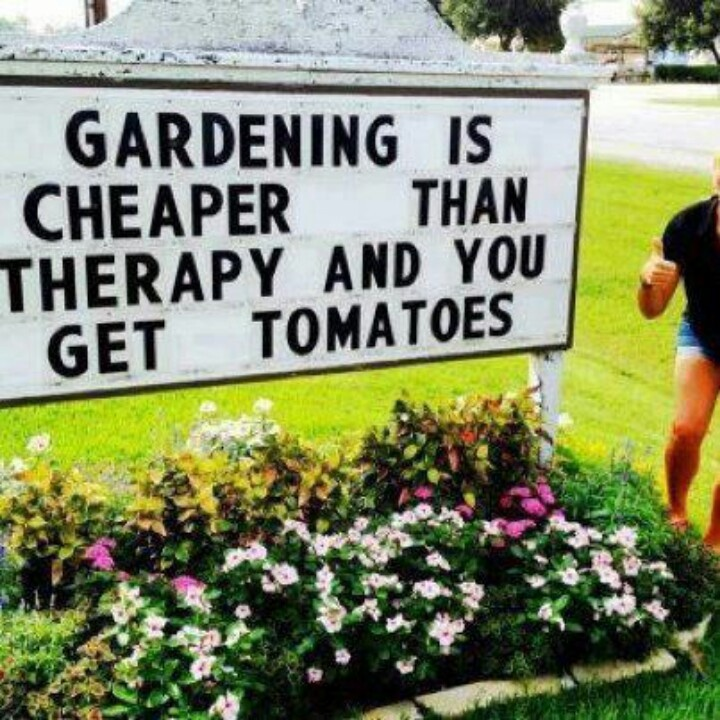 40 best Gardening for Seniors images on Pinterest | Garden ...
