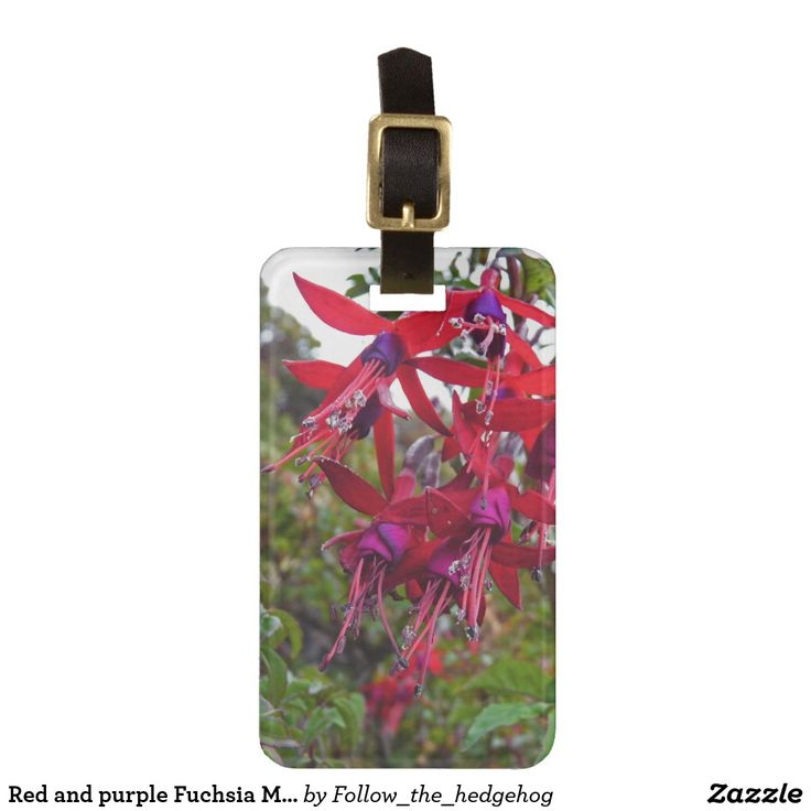 Red and purple Fuchsia Magellanica Luggage Tag Red and purple Fuchsia Magellanica. Hummingbird Fuchsia or Hardy Fuchsia is a species of flowering plant in the Evening Primrose family, native to Patagonia. The picture was taken in Ushuaia, Argentina On the back all the place you need for your address and phone with your elegant initials on the background. It's time to for vacation, it's time to fly and find easily your luggage! All customizable!