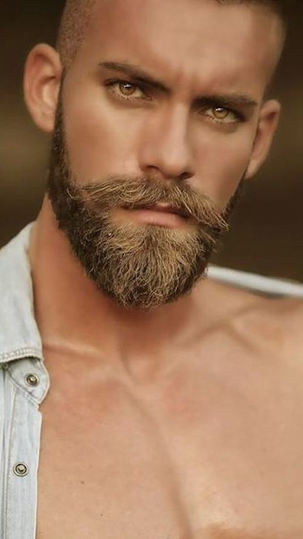 42 Dapper Beard Styles for Bald Men | Bald Men with beautiful eyes and Beards