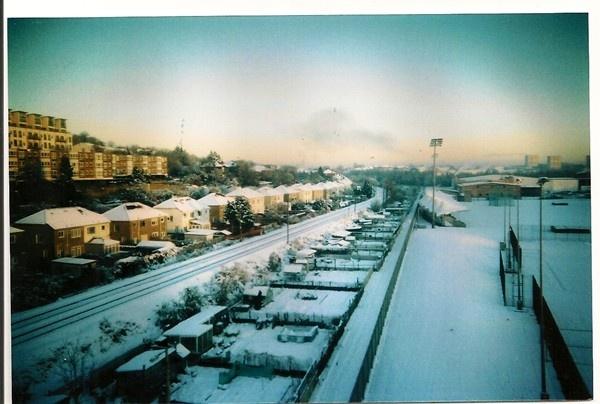 Winter at Victoria Park Allotments