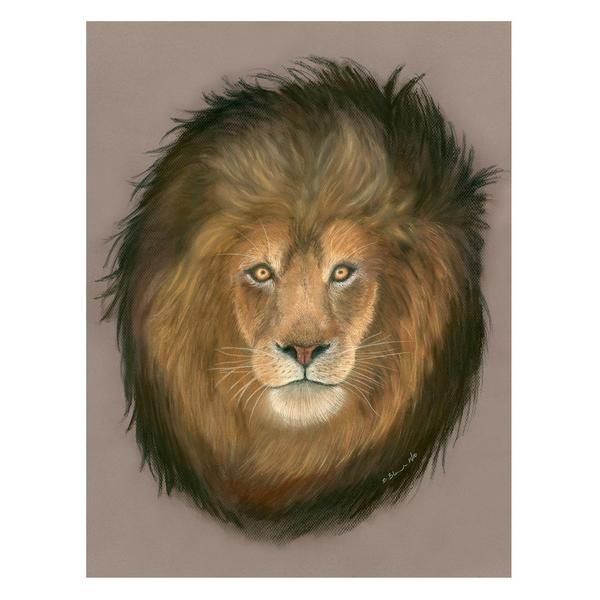 Male Adult Lion Pastel Illustration