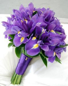 Iris Bridal Bouquet | ... bridal purple purple iris bouquets mood flowers irises iris bridal