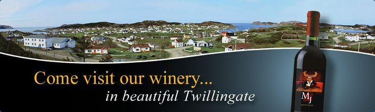 Auk Island Winery, Twillingate (added to the trip)