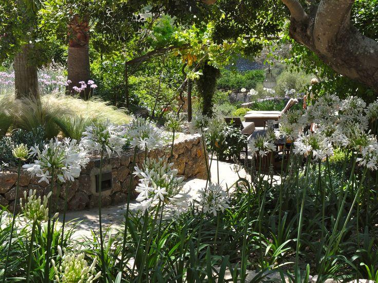 Mediterranean Country Garden, Mallorca by Mark Whiting, Contemporanium #country #garden #design #planting #xerogardening #waterwise #gravel mark@contemporanium.com