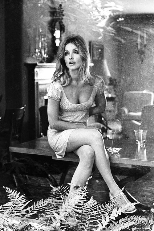 Sharon Tate. Posted on Old Hollywood, Pinterest.
