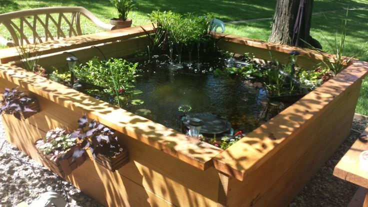 The 56 Best Images About Pond Ideas On Pinterest