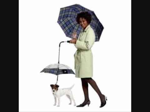 Se il vostro amico non ama la pioggia...