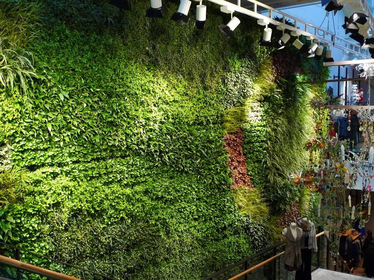 Living Wall | Anthropologie-Living-Wall.jpg