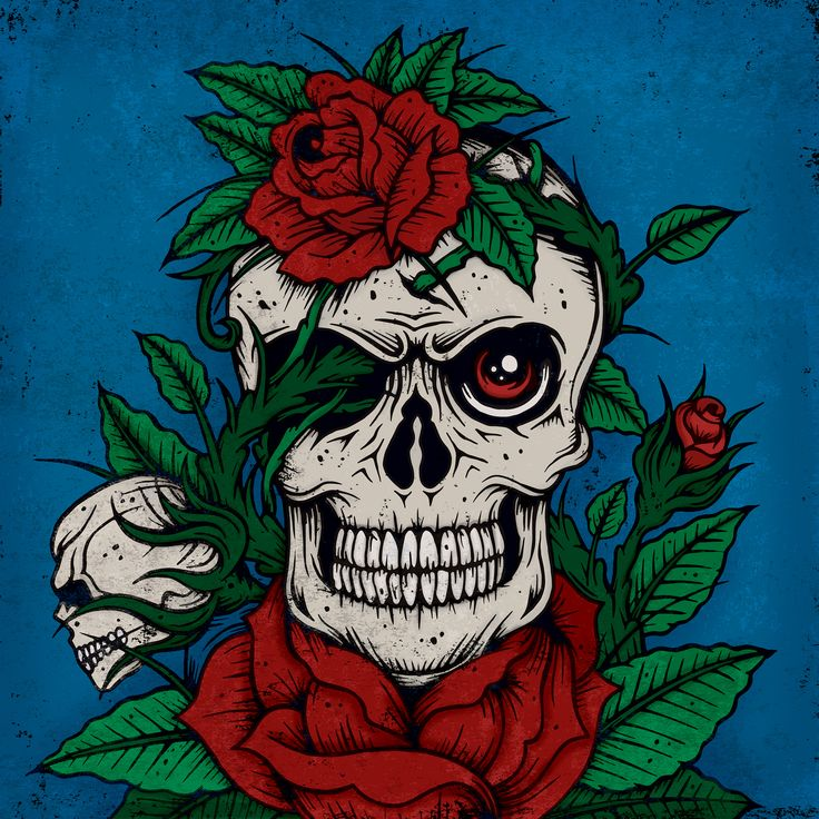 Skull and Rose illustration for the Secret7 record sleeve. Rolling Stones Dead Flowers. Matt Carter