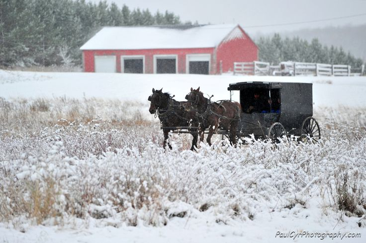 Simple life in Northern Maine by Paul Cyr PhotographyMaine Places, Winter, Aroostook County Maine, Amish Life, Northern Maine, Cyr Photography, Maine Stuff, Amish Living, Amish Simple