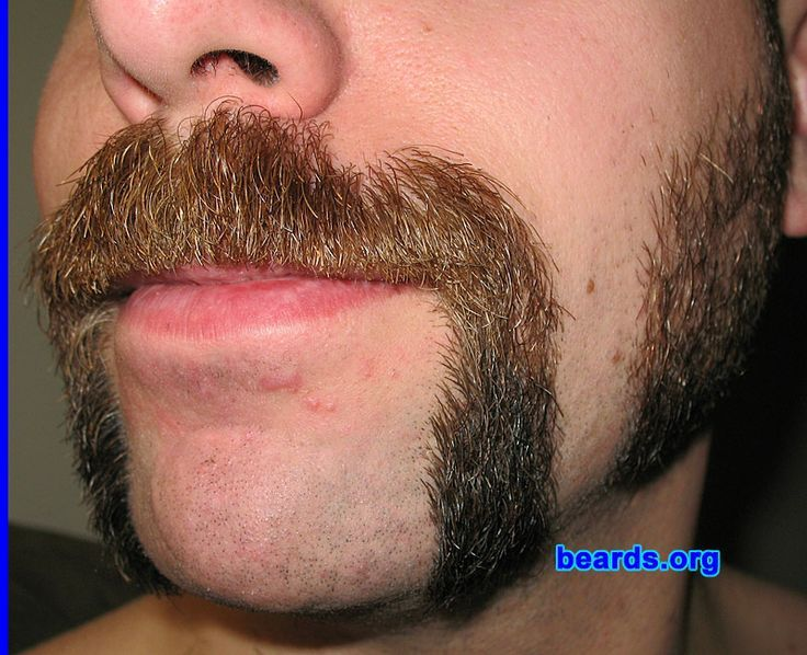horseshoe mustache google search facial hair mustache pinterest search. Black Bedroom Furniture Sets. Home Design Ideas