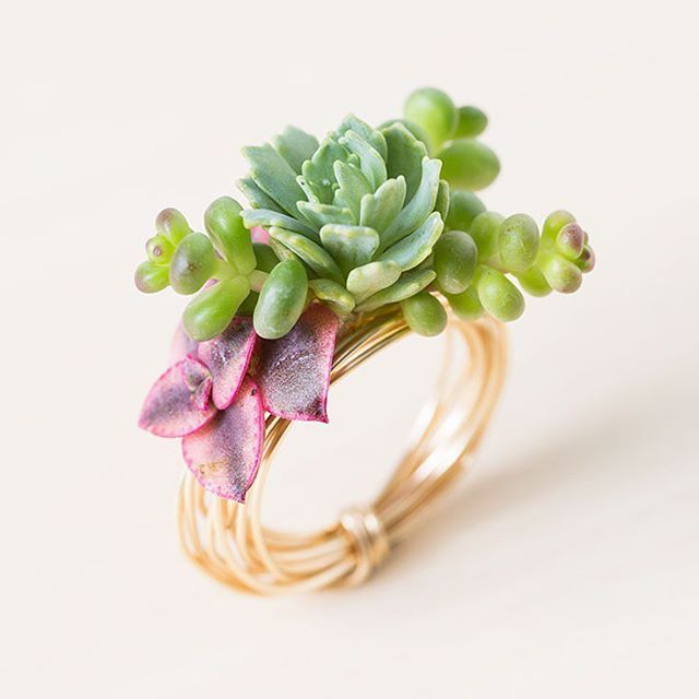 Did you know you can make jewelry with succulents? See a tutorial for this ring…