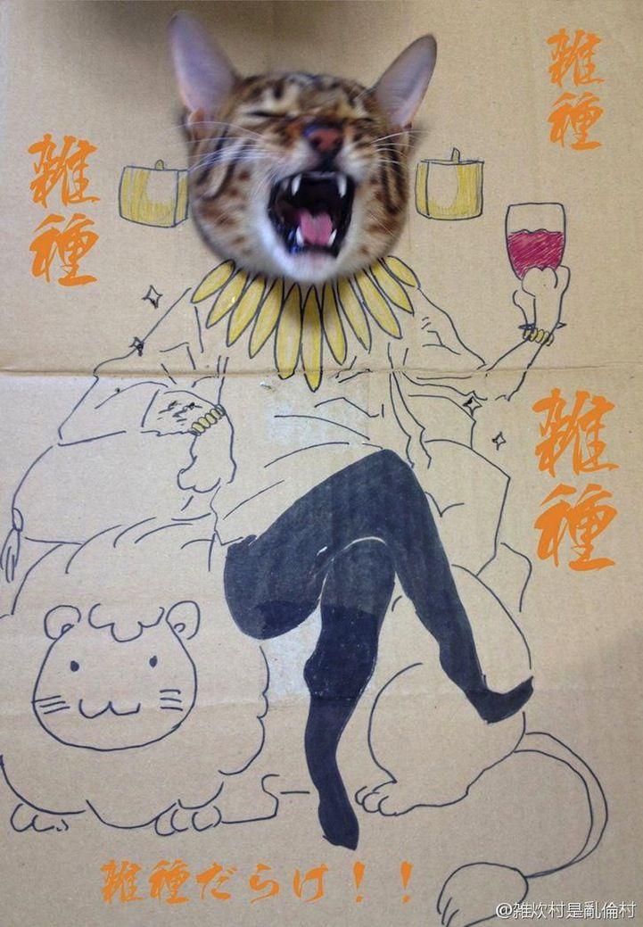 Fun Cardboard Cutouts Result in Comical Kitty Cosplay