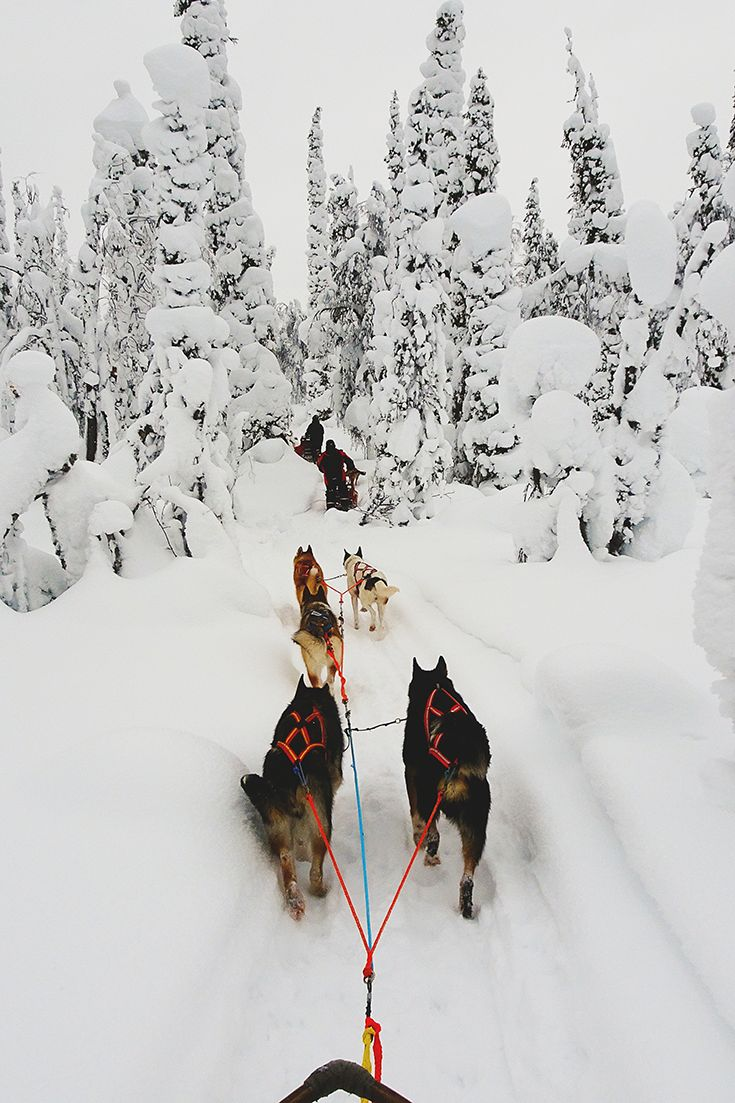 Check out these amazing photos of Finland in winter and be mesmerized by its beauty! She is a true beauty so click through and see for yourself or pin it for later.