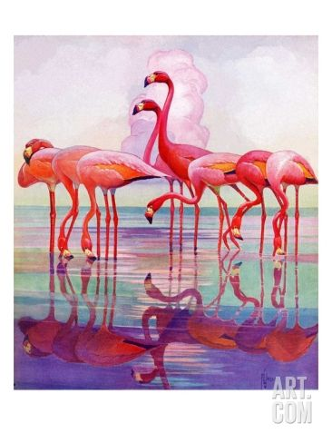 Pink Flamingos, January 29, 1938 Giclee Print by Francis Lee ...