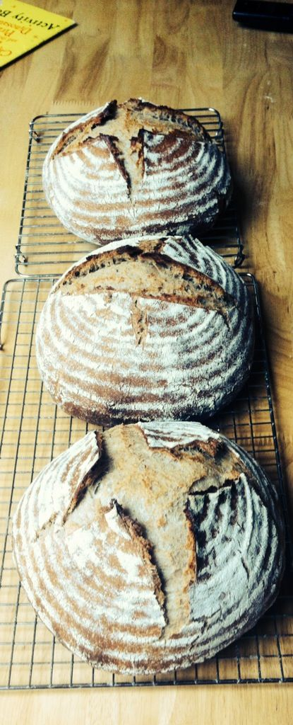 Sourdough Saturdays here at Bread For Life