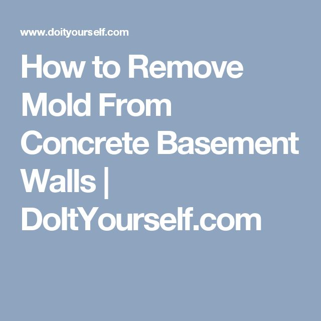 ideas about remove mold on pinterest remove black mold remove mold