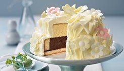 Summer: Double layer cake
