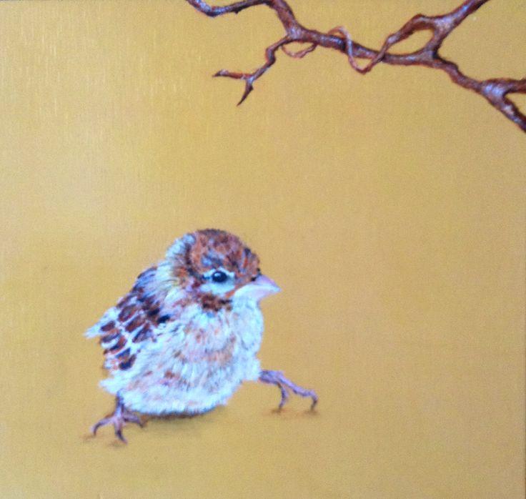 Pájaro fondo amarillo