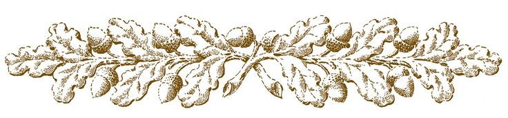 Black And White Autumn Clipart | Vintage Fall Clip Art – Ornamental Oak Branches