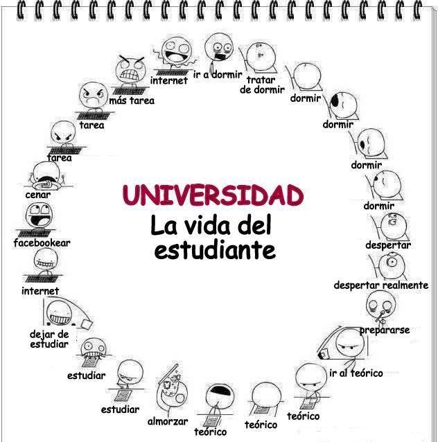 La vida del estudiante :) #estudiantes #universitarios