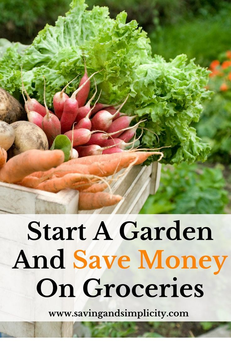 198 best saving simplicity images on pinterest money tips saving money and saving tips - Money saving tips in gardening ...