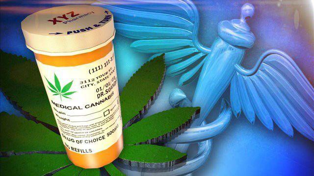 Das therapeutische Potenzial von Cannabis scheint grenzenlos, es geht weit darüber hinaus nur Übelkeit oder Schmerzen bei Todkranken mildern zu können. Christina Sanchez, ein Molekularbiologin der …