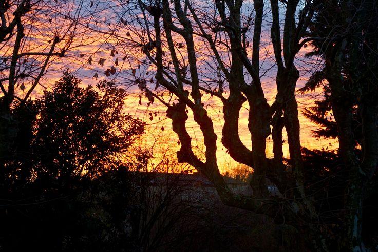 PORTIA DESIGNS.: Sunrise Anse, France
