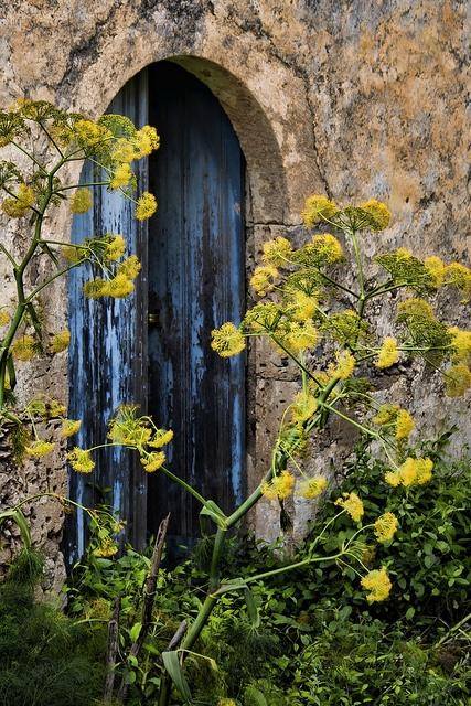 Koumoi, Kriti, #Greece