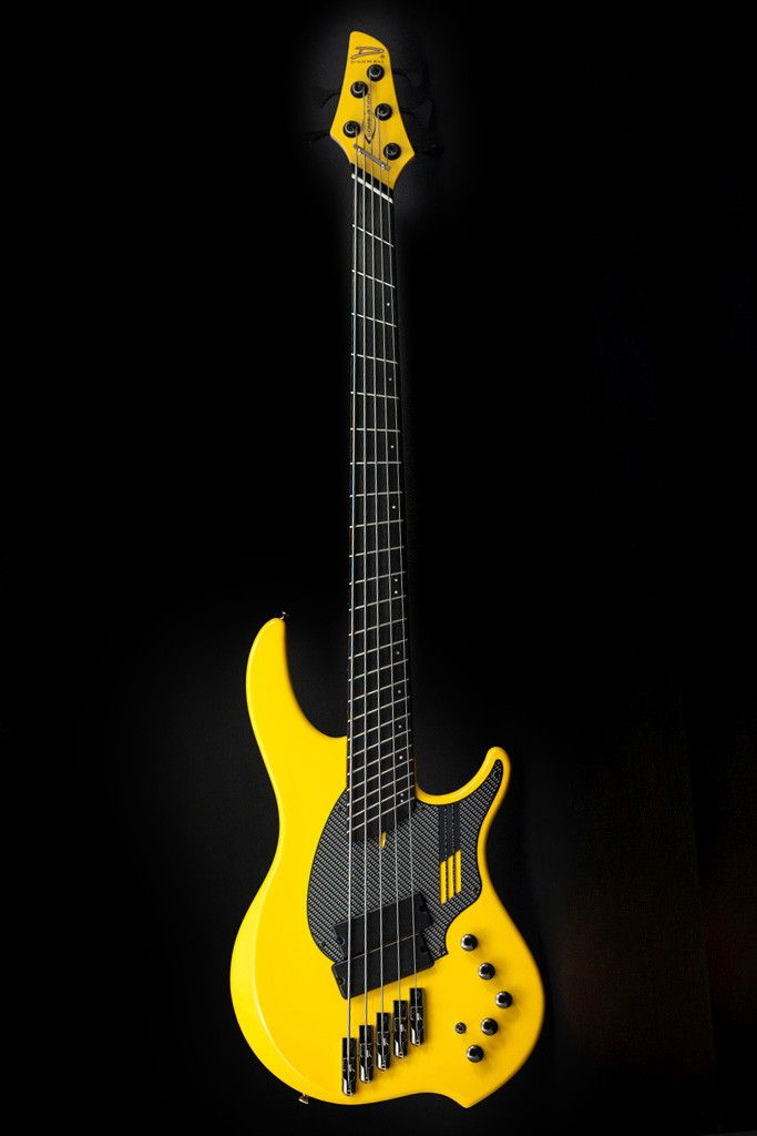 Dingwall Combustion Nolly Sig bass; I find the Dingwall variable scale and fan-fretted instruments very interesting.