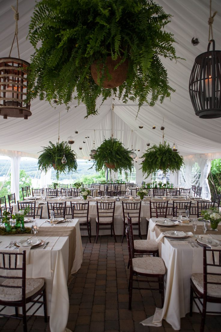 Boston Ferns Wedding with Lanterns!                                                                                                                                                      More