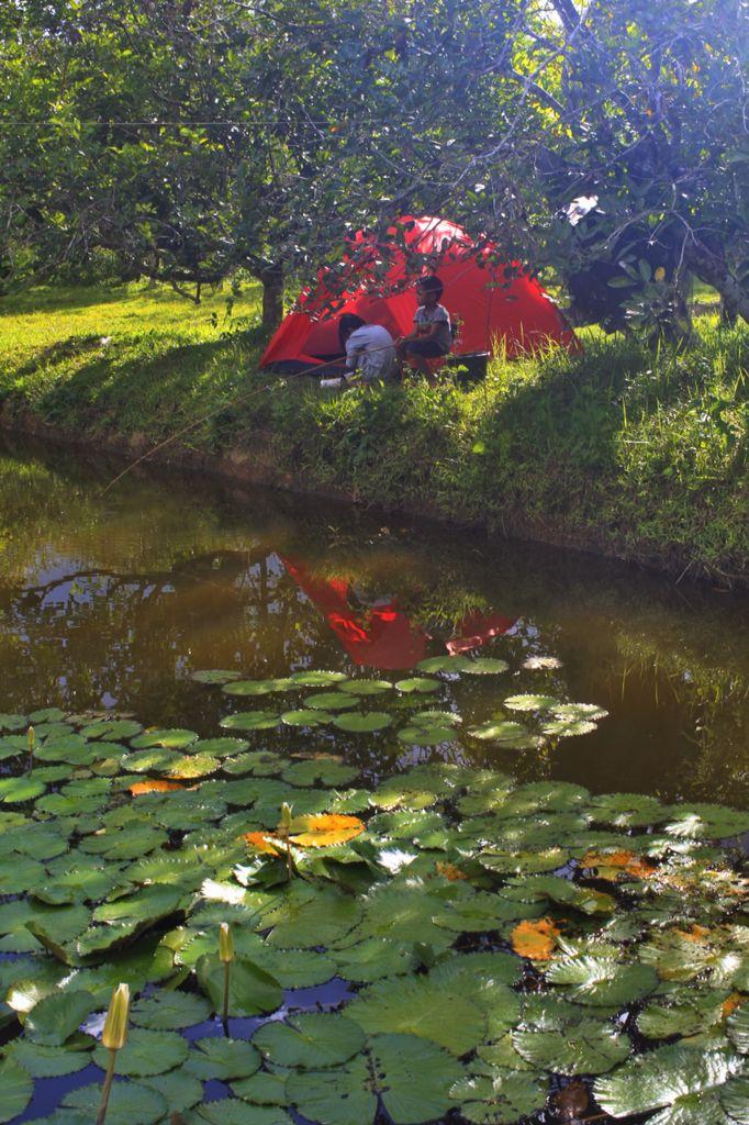 Mancing di Kebun Konda, Kendari, Sulawesi Tenggara, Indonesia