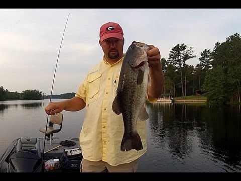The mojo rig for fishing grass how to bass fishing how for Bass fishing tips