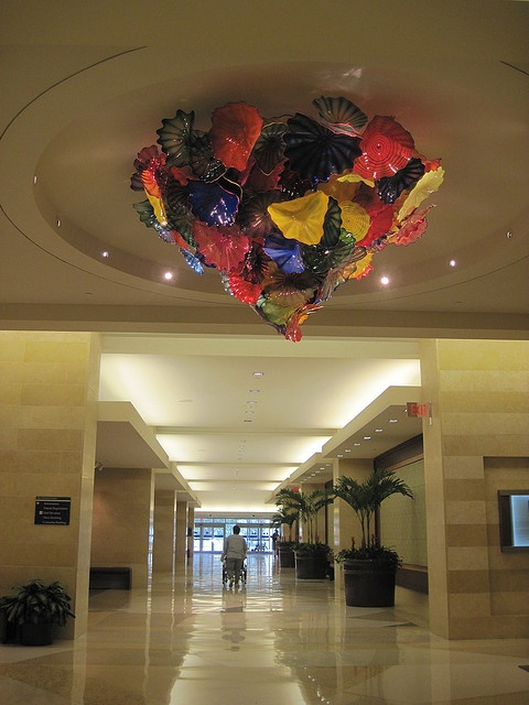 Dale Chihuly chandelier, Mayo Clinic, Jacksonville, FL by bridger15, via Flickr
