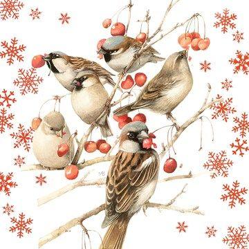 Kaarten - kerst - marjolein bastin kerst   Hallmark