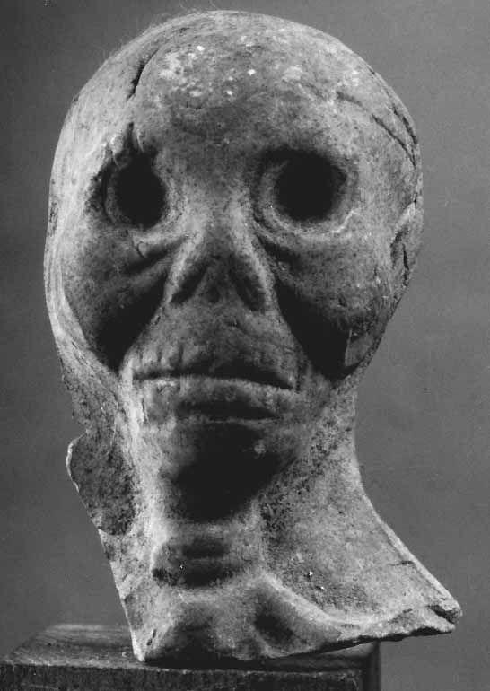 Crâne / Skull.  Département des Antiquités grecques, étrusques et romaines / Department of Greek, Etruscan, and Roman Antiquities. © Musée du Louvre