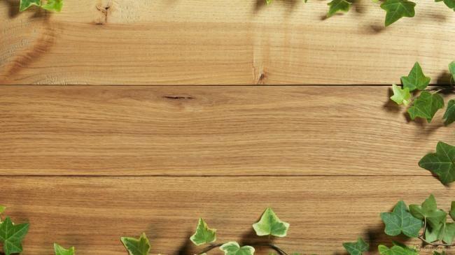 Картинки  Текстура дерева Деревянно-растительная текстура