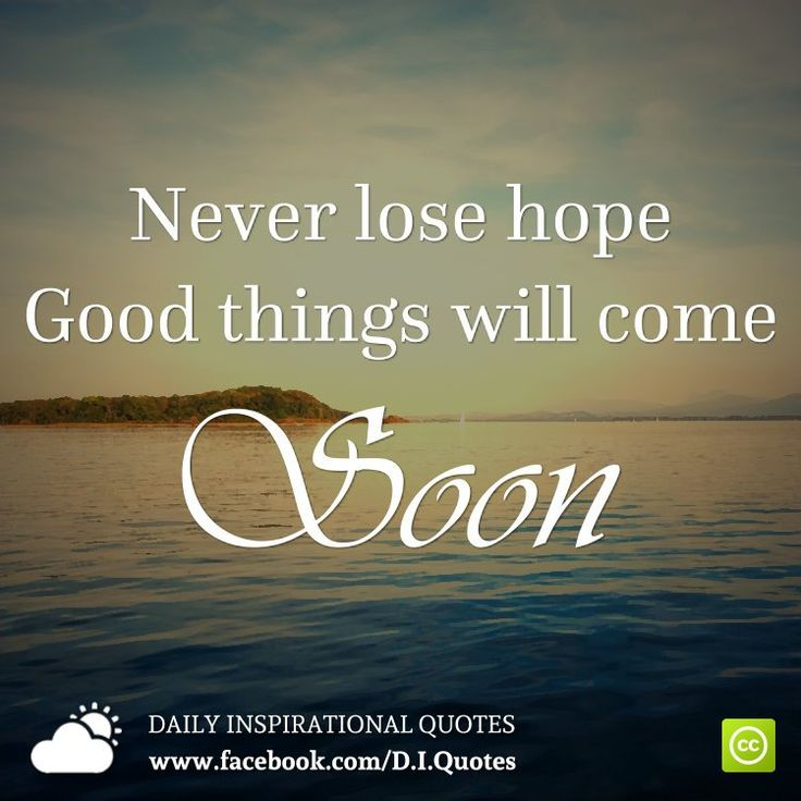 Inspirational Quotes About Hope: Best 25+ Never Lose Hope Ideas On Pinterest
