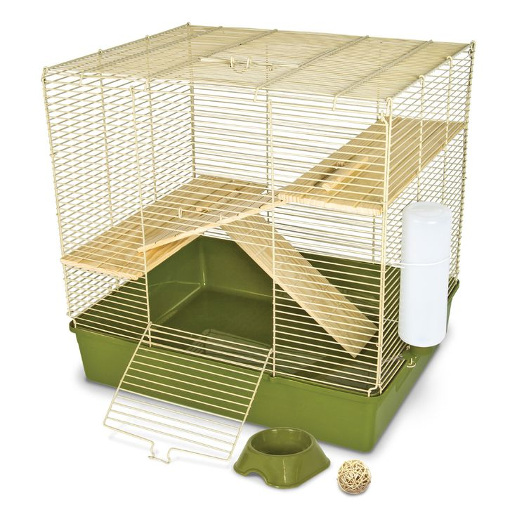 Mouse Proof Dog Door : Ideas about rat cage accessories on pinterest