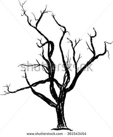 Tree / Bare Tree/ Tree silhoutte
