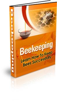 Bee Keeping: How To Learn How To Successfully Keep Bees